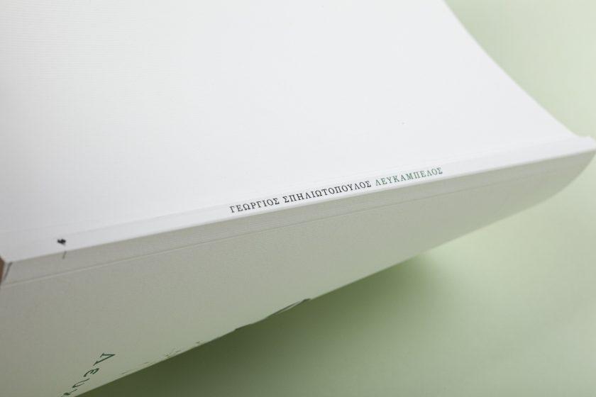 Λευκάμπελος   Σπηλιωτόπουλος, Γεώργιος